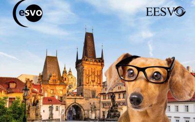Konferencja ESVO i EESVO – Praga, 11-14 października 2018