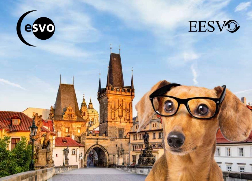 ESVO & EESVO Meeting – October 11-14, 2018, Prague, Czech Republic