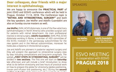 First Steps in Vitreoretinal Surgery ESVO / EESVO Prague 2018