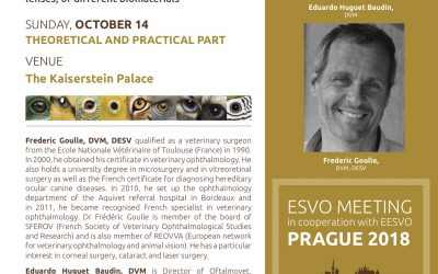 UPDATED CORNEAL SURGERY – ESVO/EESVO – Prague 2018